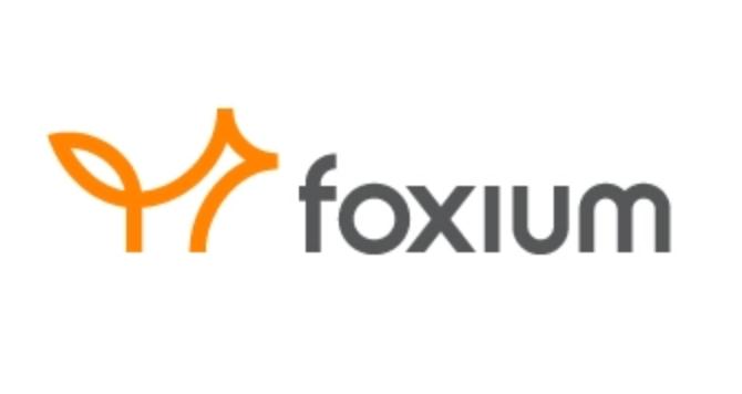 Lær noe nytt: Foxium casinoutvikler